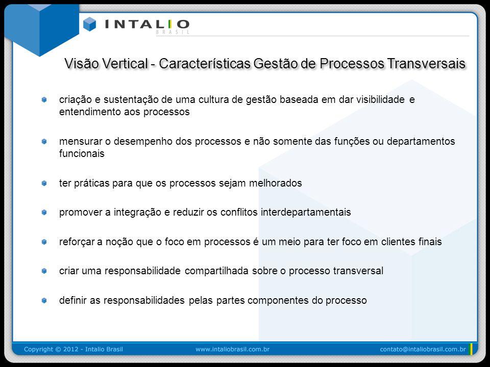 Visão Vertical - Características Gestão de Processos Transversais Visão Vertical - Características Gestão de Processos Transversais criação e sustenta