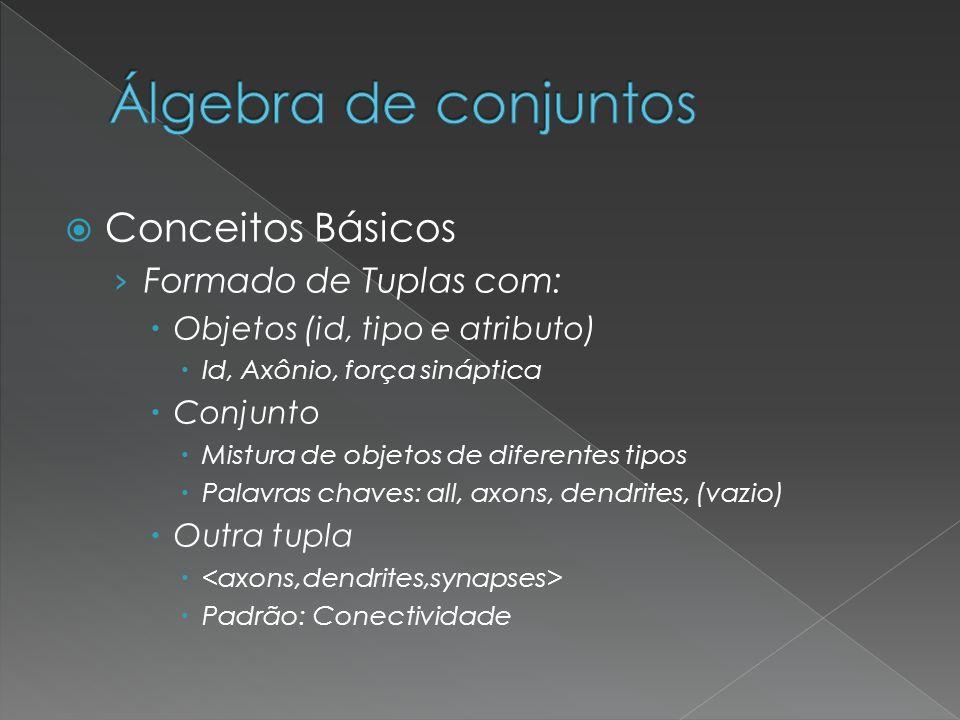 Conceitos Básicos Formado de Tuplas com: Objetos (id, tipo e atributo) Id, Axônio, força sináptica Conjunto Mistura de objetos de diferentes tipos Pal