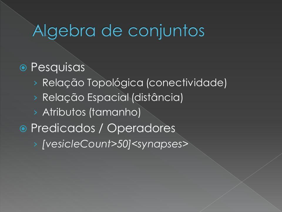 Pesquisas Relação Topológica (conectividade) Relação Espacial (distância) Atributos (tamanho) Predicados / Operadores [vesicleCount>50]