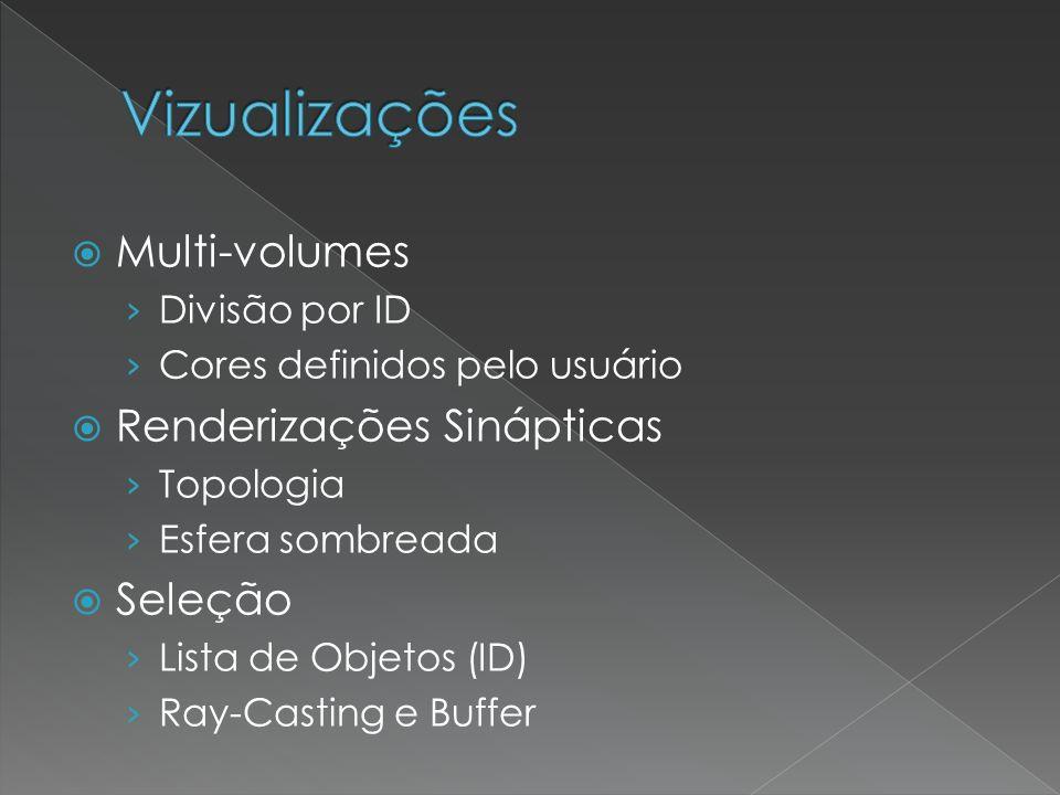 Multi-volumes Divisão por ID Cores definidos pelo usuário Renderizações Sinápticas Topologia Esfera sombreada Seleção Lista de Objetos (ID) Ray-Casting e Buffer