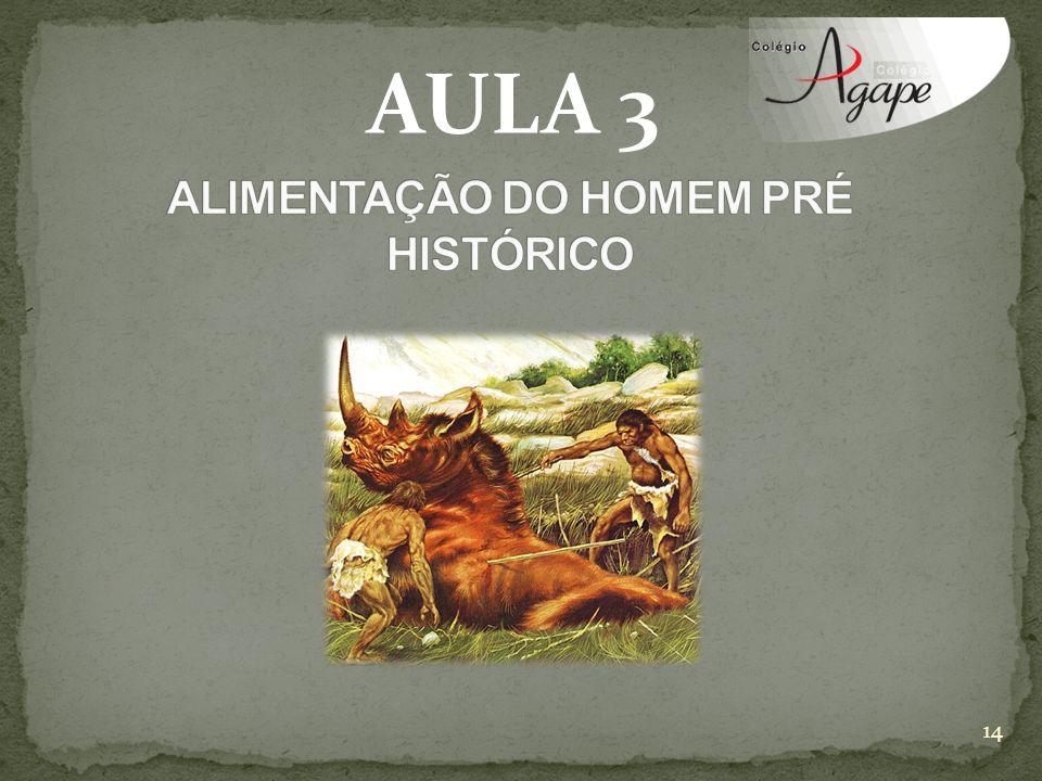 AULA 3 14
