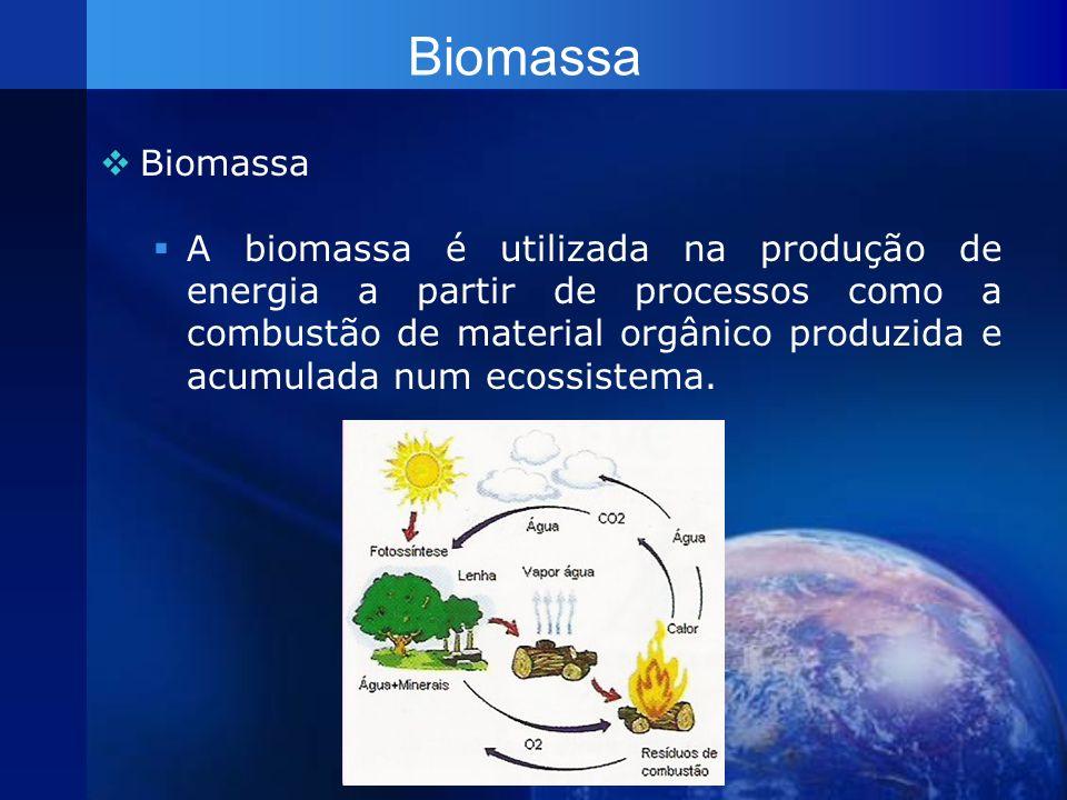 Biomassa A biomassa é utilizada na produção de energia a partir de processos como a combustão de material orgânico produzida e acumulada num ecossiste
