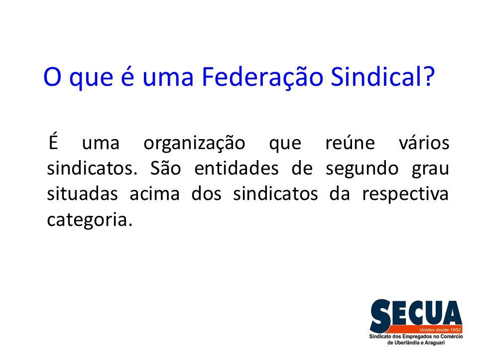 O que é uma Federação Sindical? É uma organização que reúne vários sindicatos. São entidades de segundo grau situadas acima dos sindicatos da respecti