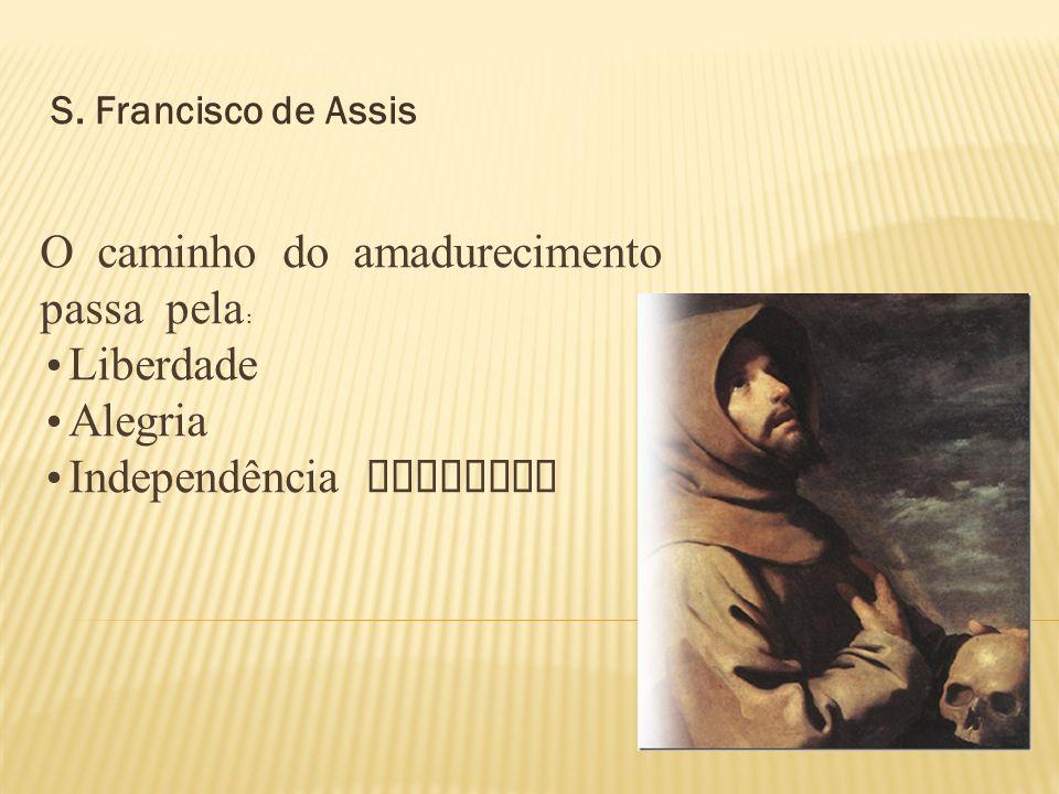 DESCREVEU O DISCERNIMENTO DOS ESPÍRITOS COMO O CAMINHO PARA UMA CONSCIÊNCIA MADURA, QUE SENTE O QUE DEUS QUER DE CADA PESSOA.