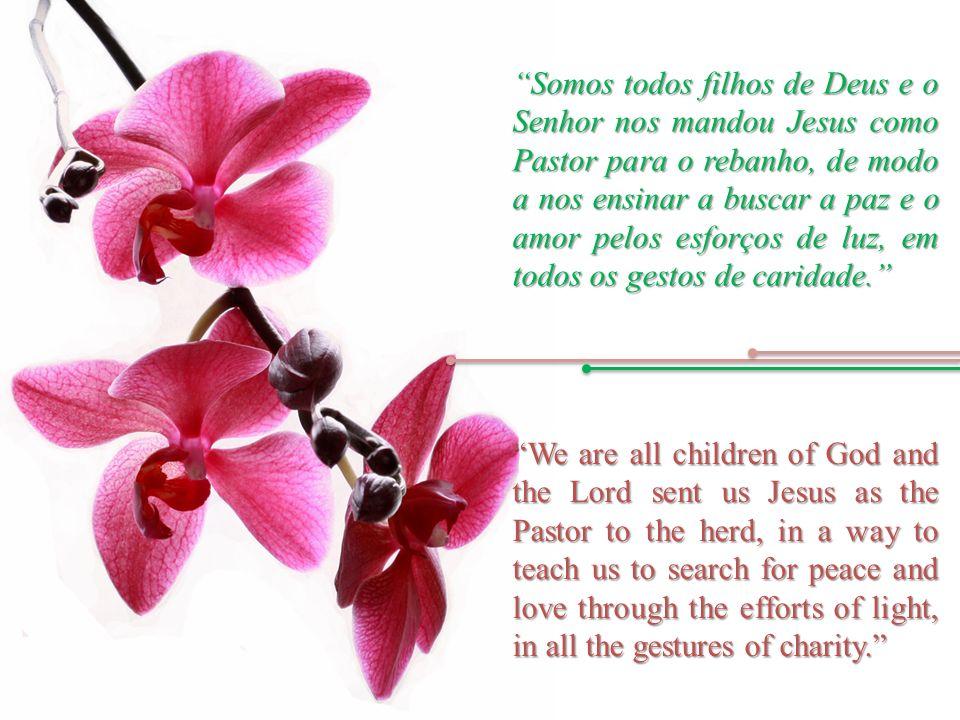 Somos todos filhos de Deus e o Senhor nos mandou Jesus como Pastor para o rebanho, de modo a nos ensinar a buscar a paz e o amor pelos esforços de luz, em todos os gestos de caridade.