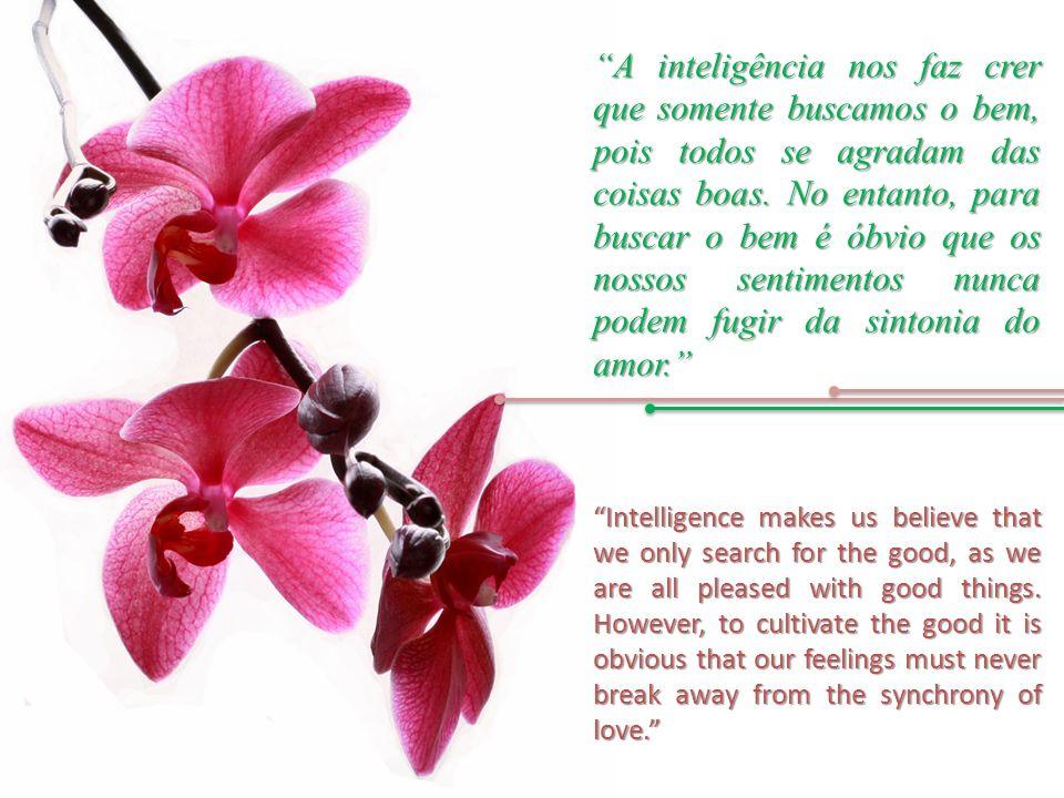 A inteligência nos faz crer que somente buscamos o bem, pois todos se agradam das coisas boas.