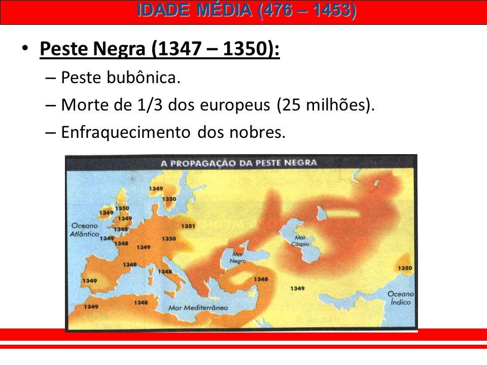 IDADE MÉDIA (476 – 1453) A monarquia inglesa: – Enfraquecimento da nobreza. – Guerra dos Cem Anos. – Guerra das 2 Rosas (1455 – 1485): YORK X LANCASTE