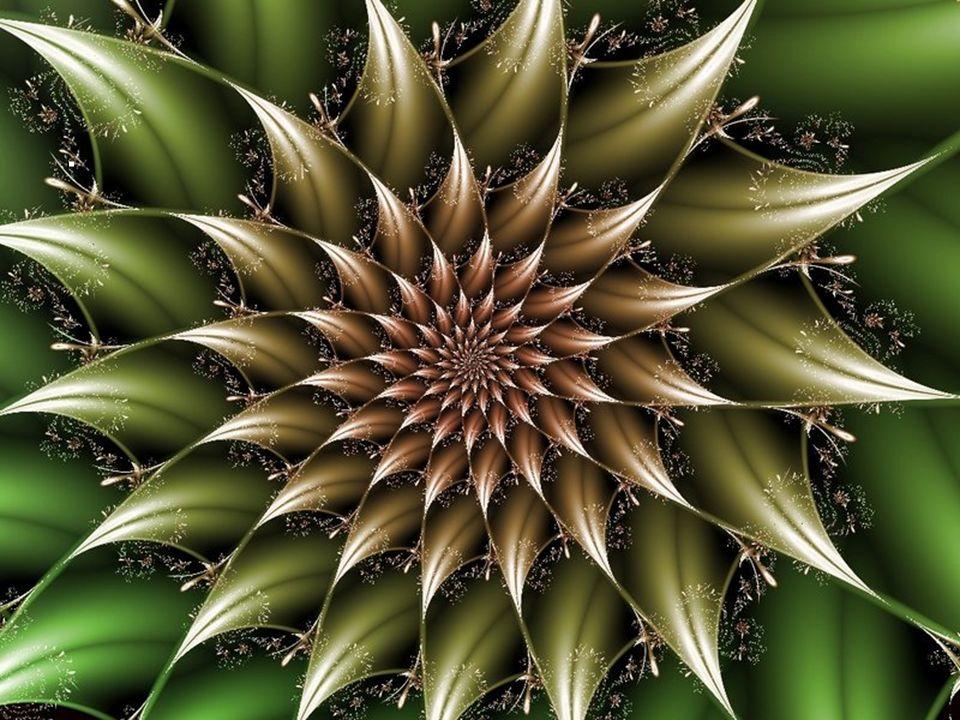 Os fractais deram origem a um novo ramo da matemática,designado como geometria da natureza Esse novo tipo de geometria aplica- -se na astronomia, na m