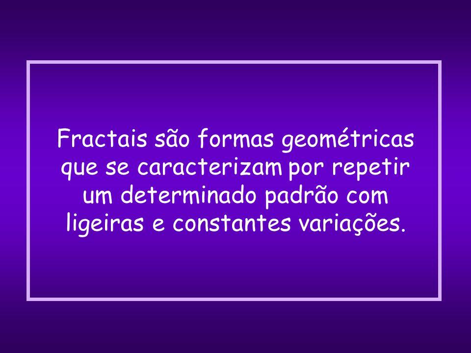 Cada universo fractal é gerado a partir de uma única equação matemática, cuja representação matemática é designada pela letra grega PHI: = 0,61803...