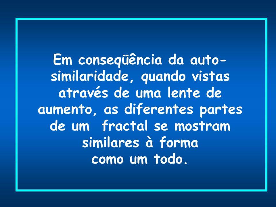 Em conseqüência da auto- similaridade, quando vistas através de uma lente de aumento, as diferentes partes de um fractal se mostram similares à forma como um todo.