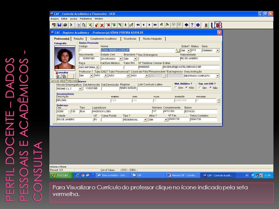 Para Visualizar o Currículo do professor clique no ícone indicado pela seta vermelha.