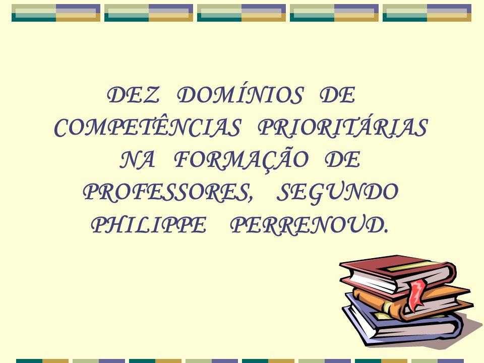 1.Organizar e dirigir situações aprendizagem 2. Administrar a progressão das aprendizagens 3.