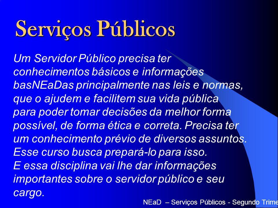 Serviços Públicos NEaD – Serviços Públicos - Segundo Trimestre - 2012 Um Servidor Público precisa ter conhecimentos básicos e informações basNEaDas pr