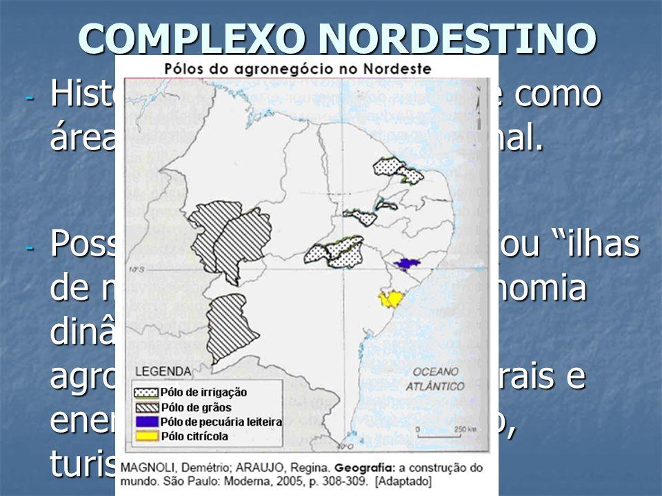 COMPLEXO NORDESTINO - Historicamente configura-se como área de repulsão populacional. - Possui pontos luminosos (ou ilhas de modernidade) com economia