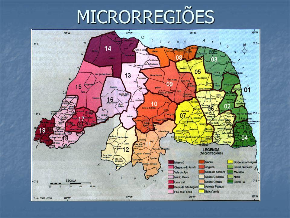 1ª DIVISÃO REGIONAL (DÉCADA DE 40) - Teve como critério para a regionalização o quadro natural (clima, relevo, vegetação...).