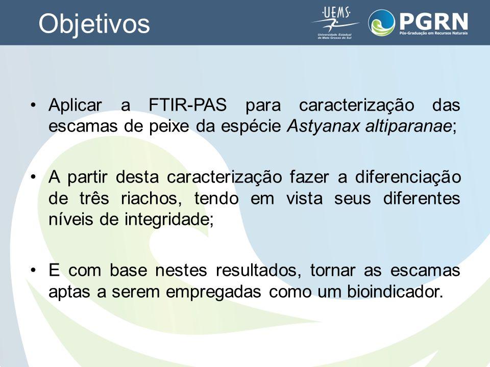Objetivos Aplicar a FTIR-PAS para caracterização das escamas de peixe da espécie Astyanax altiparanae; A partir desta caracterização fazer a diferenci