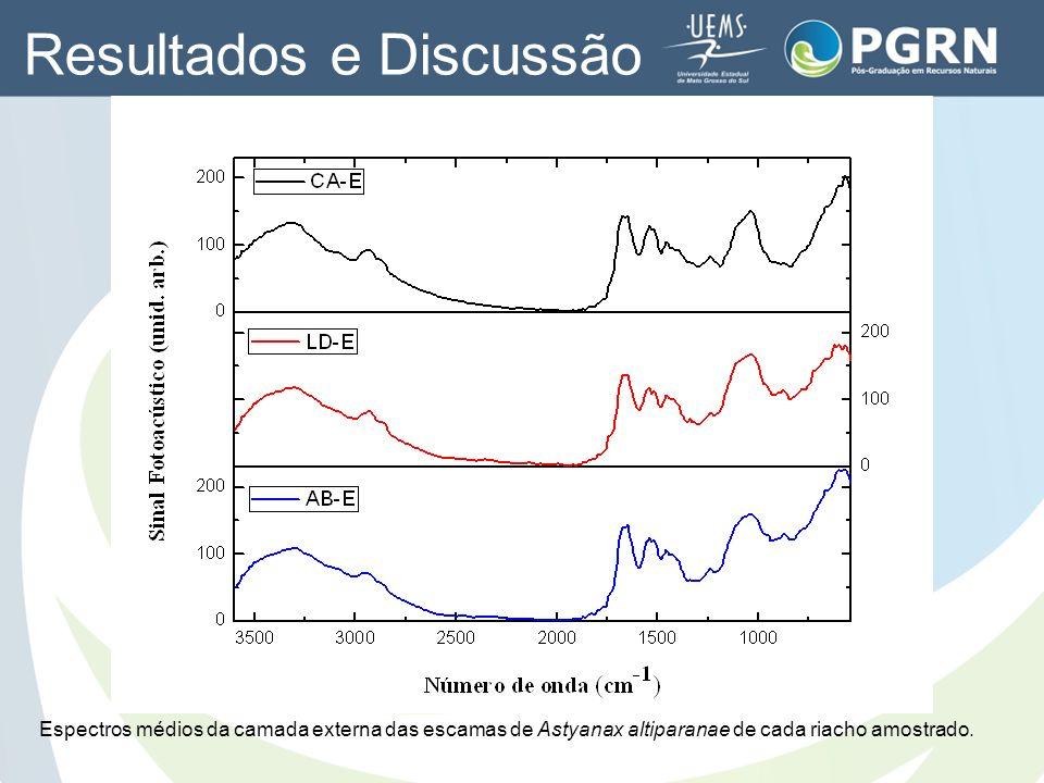 Resultados e Discussão Espectros médios da camada externa das escamas de Astyanax altiparanae de cada riacho amostrado.