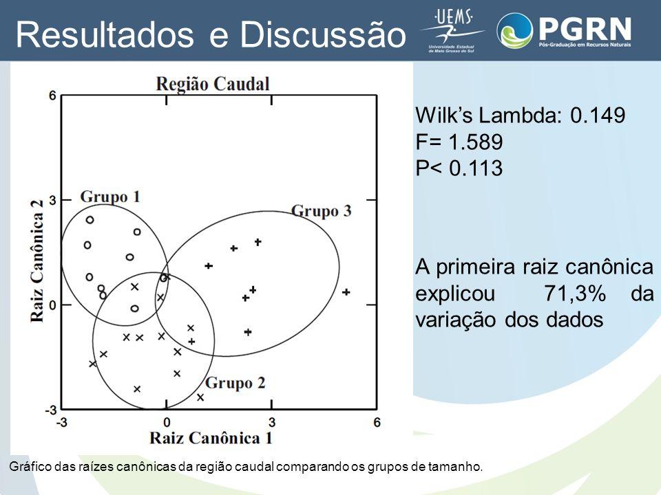 Wilks Lambda: 0.149 F= 1.589 P< 0.113 Gráfico das raízes canônicas da região caudal comparando os grupos de tamanho. A primeira raiz canônica explicou
