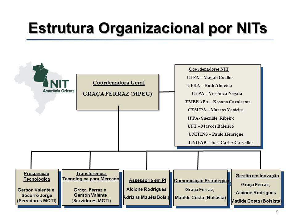 Estrutura Organizacional por NITs 10 Coordenador Geral João de Oliveira Jr.