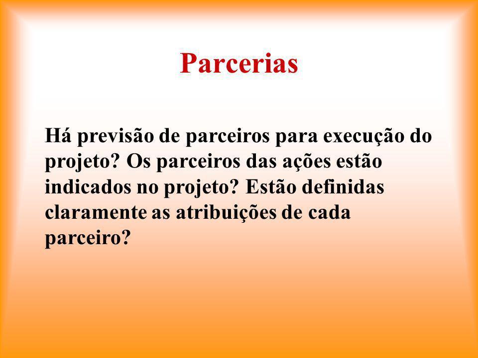 Parcerias Há previsão de parceiros para execução do projeto.