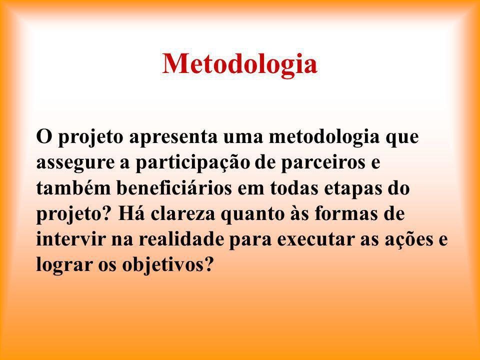 Metodologia O projeto apresenta uma metodologia que assegure a participação de parceiros e também beneficiários em todas etapas do projeto.