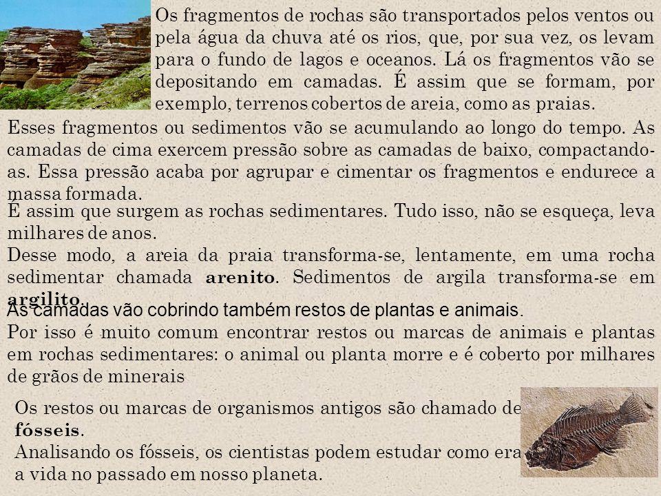 Os fragmentos de rochas são transportados pelos ventos ou pela água da chuva até os rios, que, por sua vez, os levam para o fundo de lagos e oceanos.