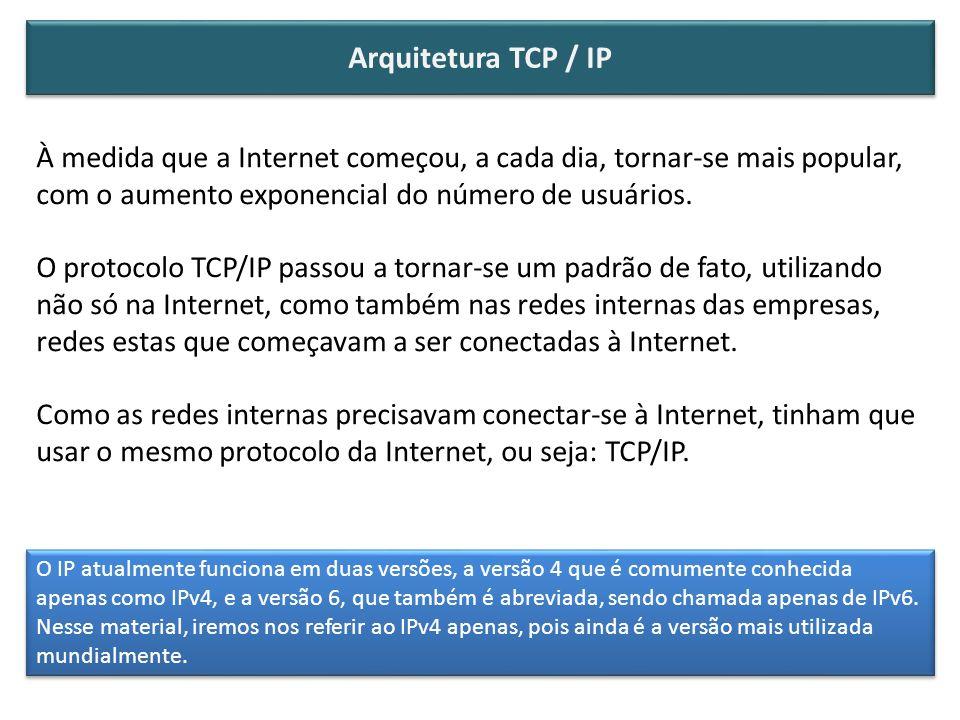 À medida que a Internet começou, a cada dia, tornar-se mais popular, com o aumento exponencial do número de usuários. O protocolo TCP/IP passou a torn