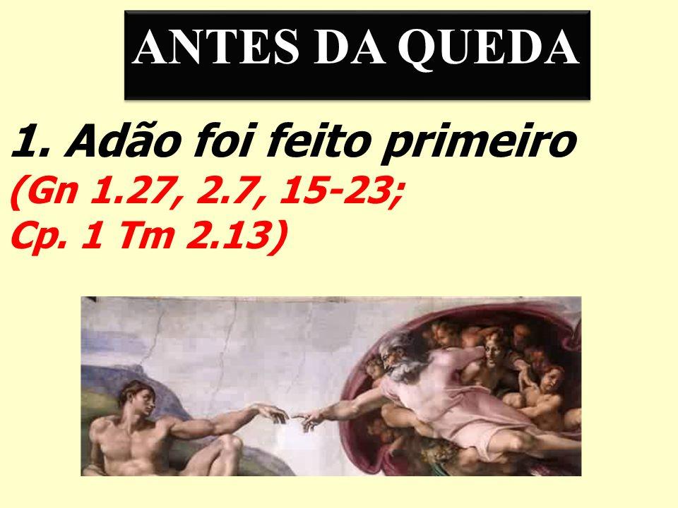 1. Adão foi feito primeiro (Gn 1.27, 2.7, 15-23; Cp. 1 Tm 2.13) ANTES DA QUEDA