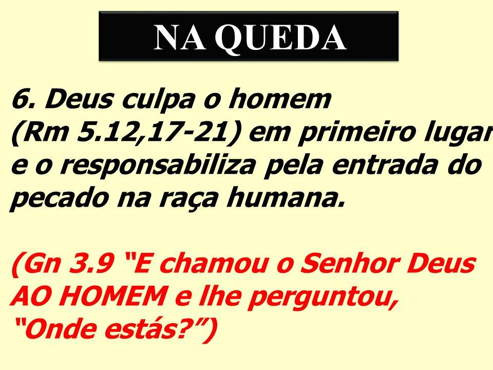 NA QUEDA 6. Deus culpa o homem (Rm 5.12,17-21) em primeiro lugar e o responsabiliza pela entrada do pecado na raça humana. (Gn 3.9 E chamou o Senhor D