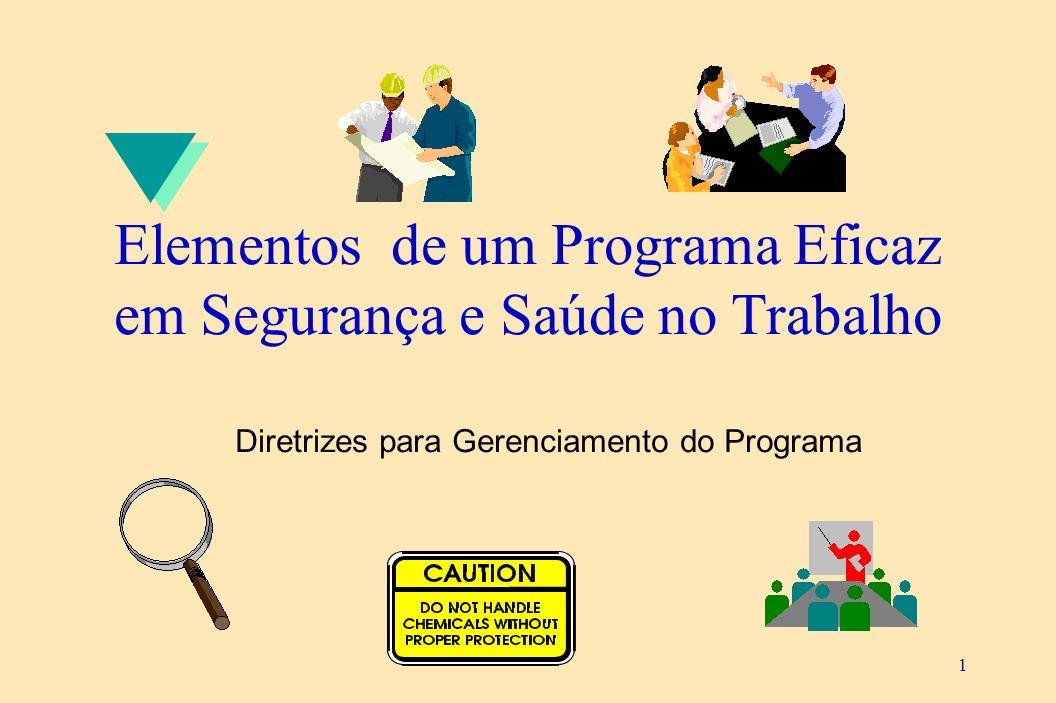 1 Elementos de um Programa Eficaz em Segurança e Saúde no Trabalho Diretrizes para Gerenciamento do Programa
