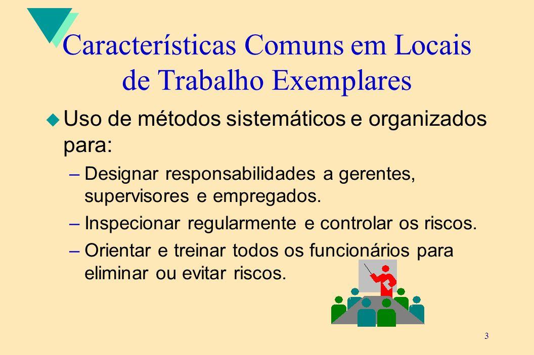 3 Características Comuns em Locais de Trabalho Exemplares u Uso de métodos sistemáticos e organizados para: –Designar responsabilidades a gerentes, su