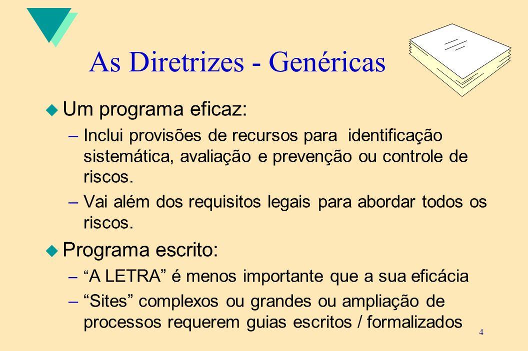 4 As Diretrizes - Genéricas u Um programa eficaz: –Inclui provisões de recursos para identificação sistemática, avaliação e prevenção ou controle de r