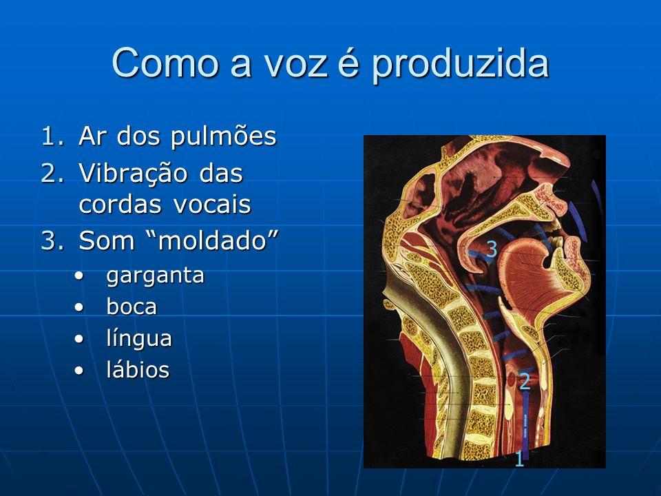 Como a voz é produzida 1.Ar dos pulmões 2.Vibração das cordas vocais 3.Som moldado gargantagarganta bocaboca língualíngua lábioslábios 1 2 3