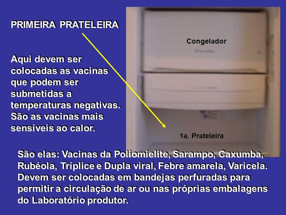 Congelador PRIMEIRA PRATELEIRA Aqui devem ser colocadas as vacinas que podem ser submetidas a temperaturas negativas.