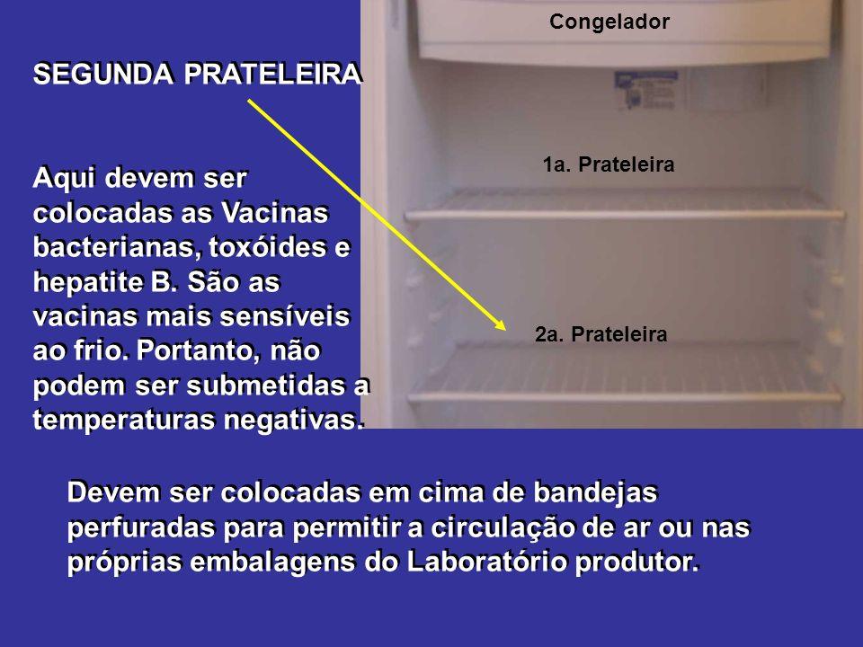 Congelador SEGUNDA PRATELEIRA Aqui devem ser colocadas as Vacinas bacterianas, toxóides e hepatite B.