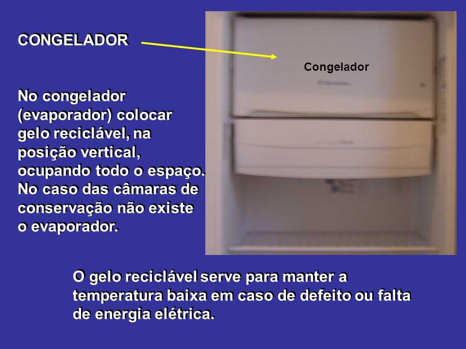 Congelador CONGELADOR No congelador (evaporador) colocar gelo reciclável, na posição vertical, ocupando todo o espaço.