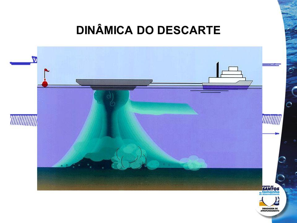 DINÂMICA DO DESCARTE