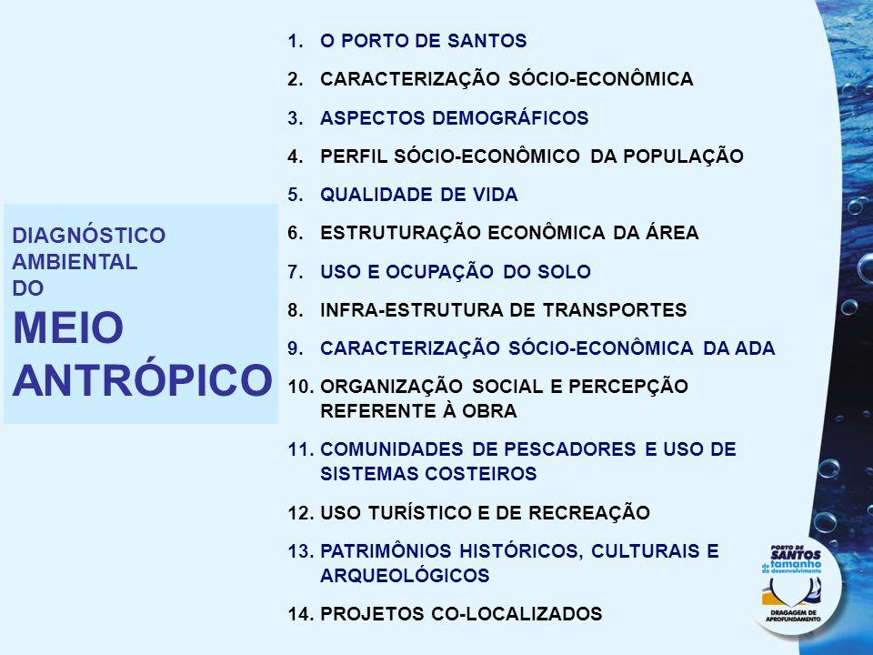 1.O PORTO DE SANTOS 2.CARACTERIZAÇÃO SÓCIO-ECONÔMICA 3.ASPECTOS DEMOGRÁFICOS 4.PERFIL SÓCIO-ECONÔMICO DA POPULAÇÃO 5.QUALIDADE DE VIDA 6.ESTRUTURAÇÃO