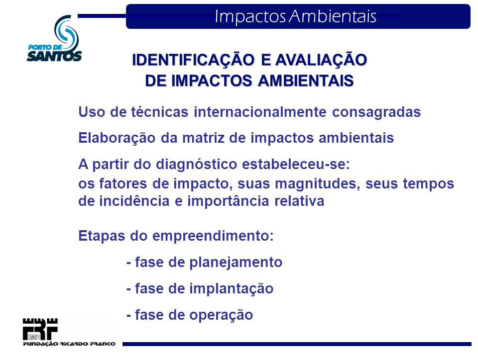 IDENTIFICAÇÃO E AVALIAÇÃO DE IMPACTOS AMBIENTAIS Impactos Ambientais Uso de técnicas internacionalmente consagradas Elaboração da matriz de impactos a