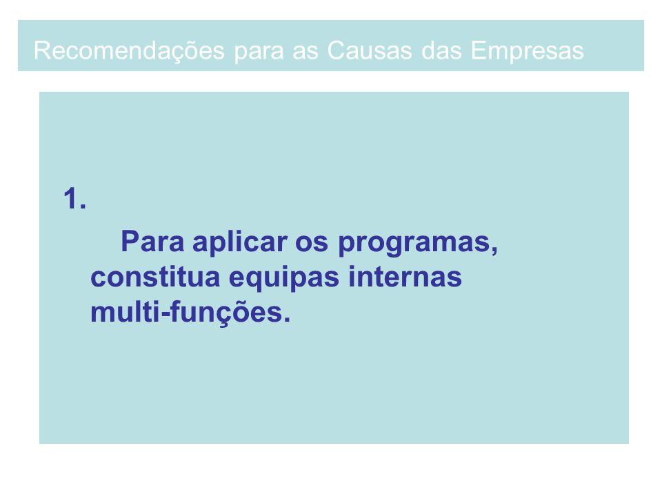 1. Para aplicar os programas, constitua equipas internas multi-funções. Recomendações para as Causas das Empresas
