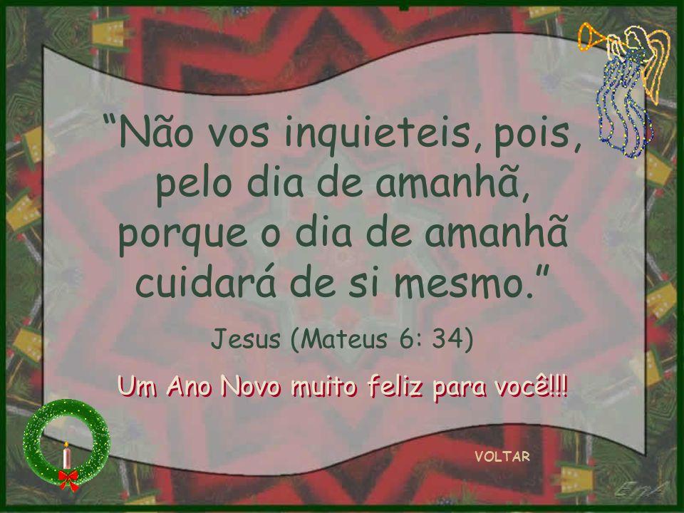 Não vos inquieteis, pois, pelo dia de amanhã, porque o dia de amanhã cuidará de si mesmo. Jesus (Mateus 6: 34) VOLTAR Um Ano Novo muito feliz para voc