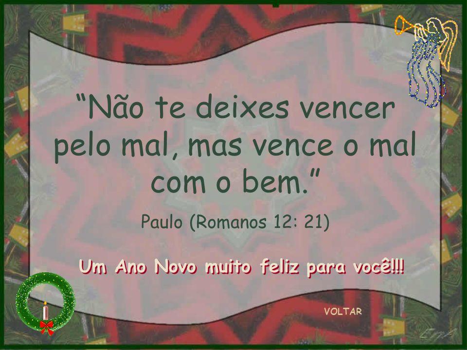 Não te deixes vencer pelo mal, mas vence o mal com o bem. Paulo (Romanos 12: 21) VOLTAR Um Ano Novo muito feliz para você!!!