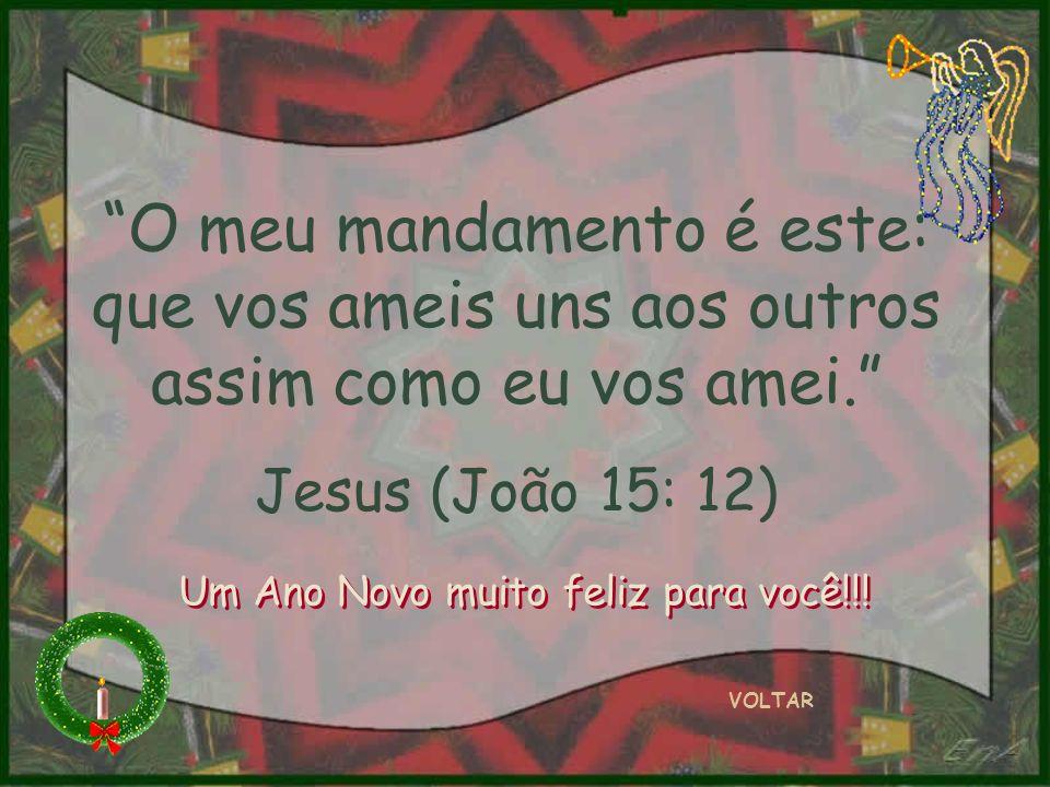 O meu mandamento é este: que vos ameis uns aos outros assim como eu vos amei. Jesus (João 15: 12) VOLTAR Um Ano Novo muito feliz para você!!!