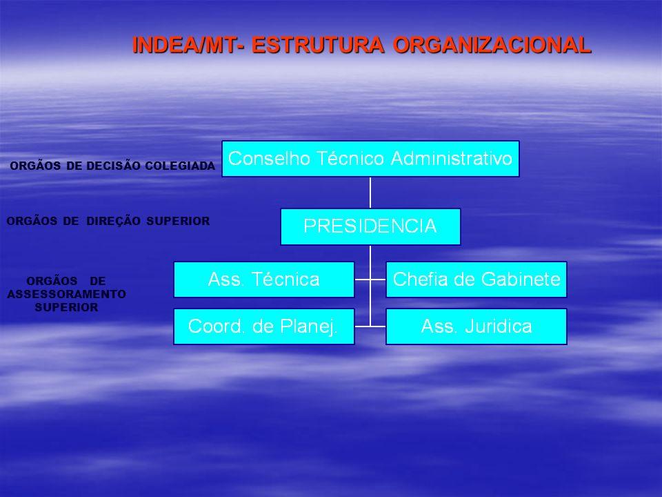 INDEA/MT- ESTRUTURA ORGANIZACIONAL INDEA/MT- ESTRUTURA ORGANIZACIONAL ORGÃOS DE DECISÃO COLEGIADA ORGÃOS DE DIREÇÃO SUPERIOR ORGÃOS DE ASSESSORAMENTO