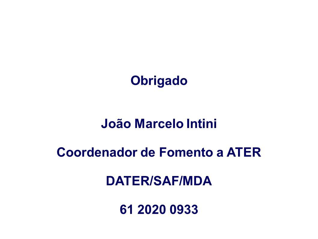 Obrigado João Marcelo Intini Coordenador de Fomento a ATER DATER/SAF/MDA 61 2020 0933