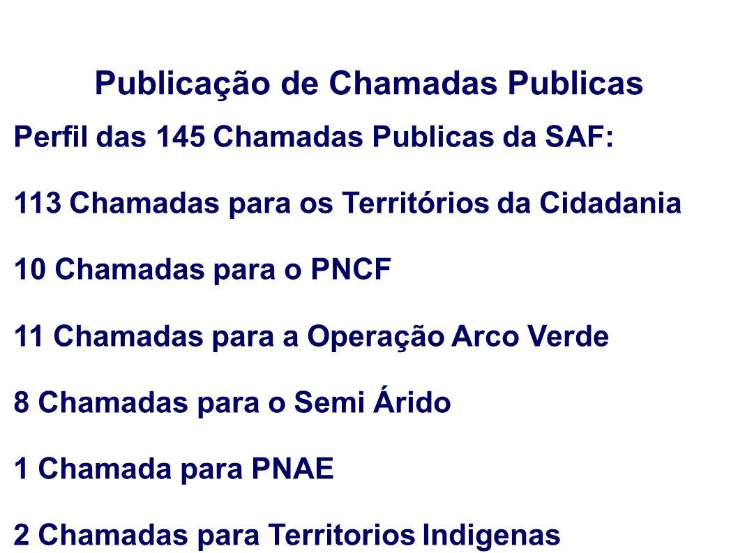Publicação de Chamadas Publicas Perfil das 145 Chamadas Publicas da SAF: 113 Chamadas para os Territórios da Cidadania 10 Chamadas para o PNCF 11 Cham