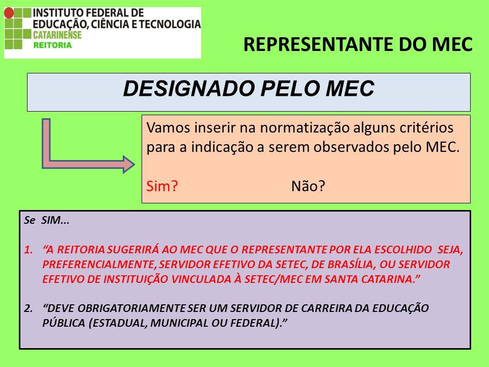 REPRESENTANTE DO MEC Vamos inserir na normatização alguns critérios para a indicação a serem observados pelo MEC.