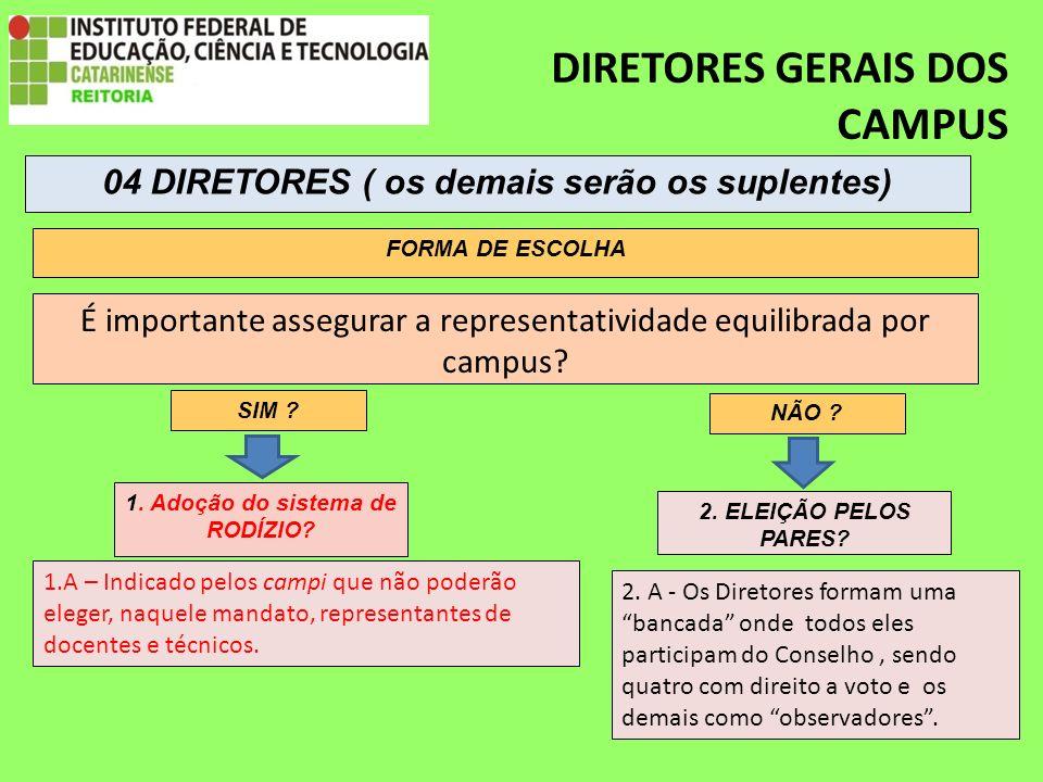 DIRETORES GERAIS DOS CAMPUS É importante assegurar a representatividade equilibrada por campus.