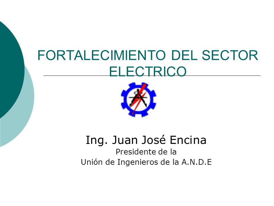 FORTALECIMIENTO DEL SECTOR ELECTRICO Ing. Juan José Encina Presidente de la Unión de Ingenieros de la A.N.D.E
