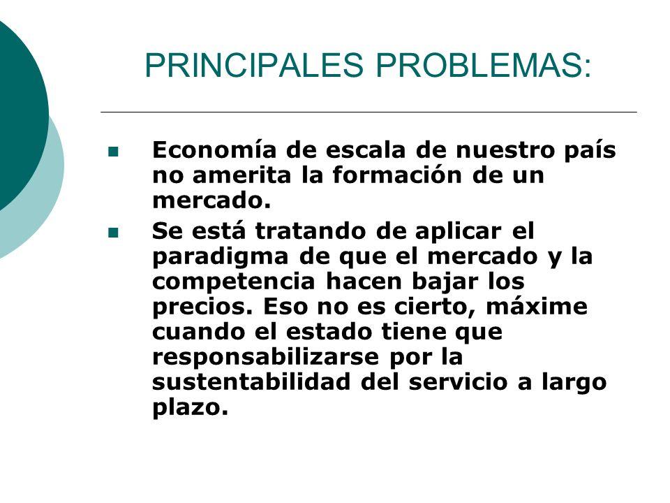 PRINCIPALES PROBLEMAS: Economía de escala de nuestro país no amerita la formación de un mercado. Se está tratando de aplicar el paradigma de que el me
